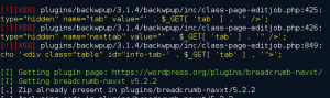 Figure 1 - Zeropress output during a scan of popular WordPress plugins