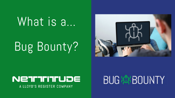 What is a Bug Bounty